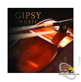 Băng Cối Gipsy Music STS Digital