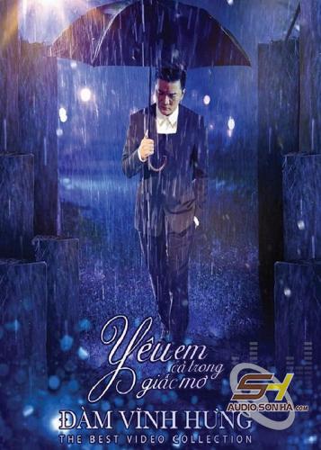 DVD Yêu em cả trong giấc mơ - Đàm Vĩnh Hưng